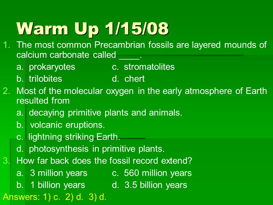 Warm Up 1/15/08 The most common Precambrian fossils are layered mounds of calcium carbonate called ____.
