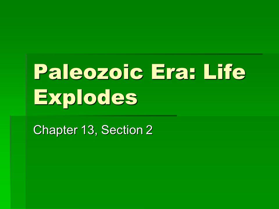 Paleozoic Era: Life Explodes