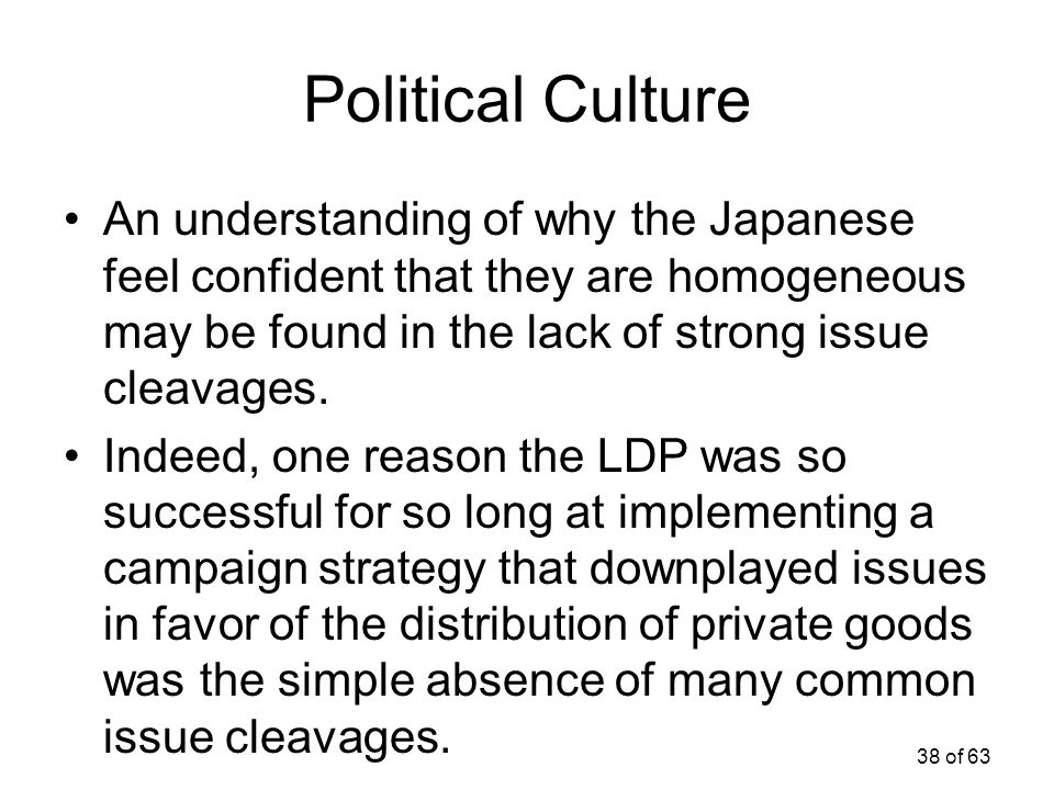 Political Culture An understanding of why the Japanese feel confident that they are homogeneous may be found in the lack of strong issue cleavages.