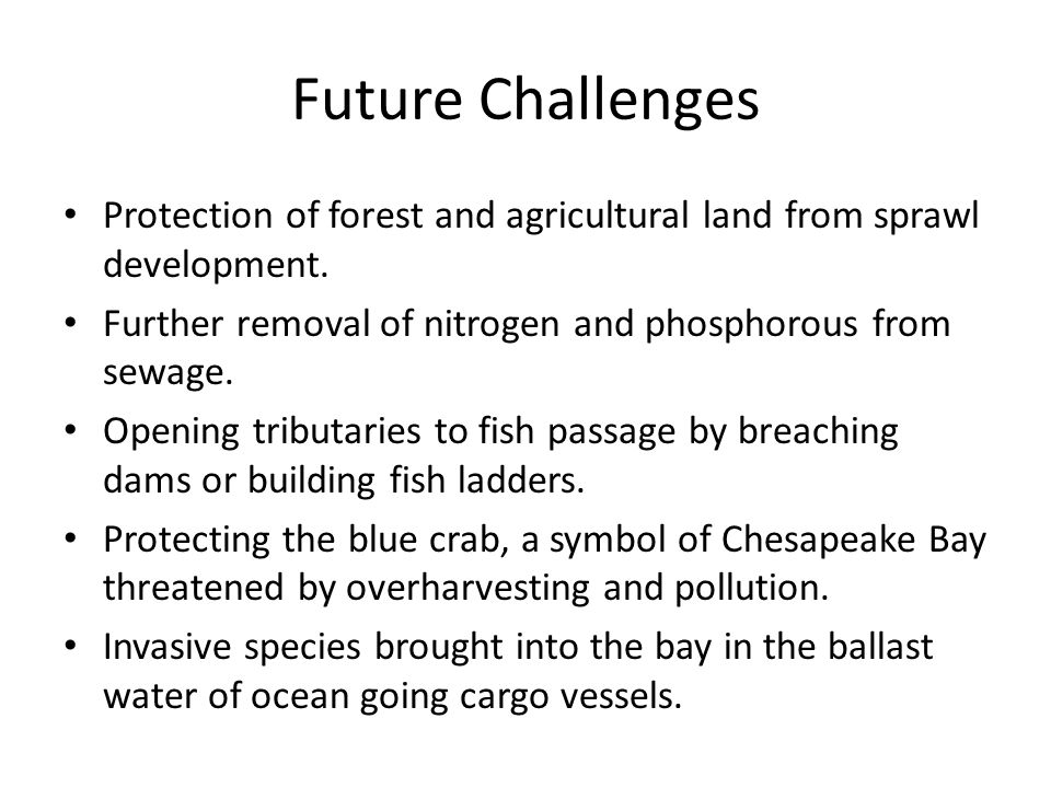 Future Challenges Protection of forest and agricultural land from sprawl development. Further removal of nitrogen and phosphorous from sewage.