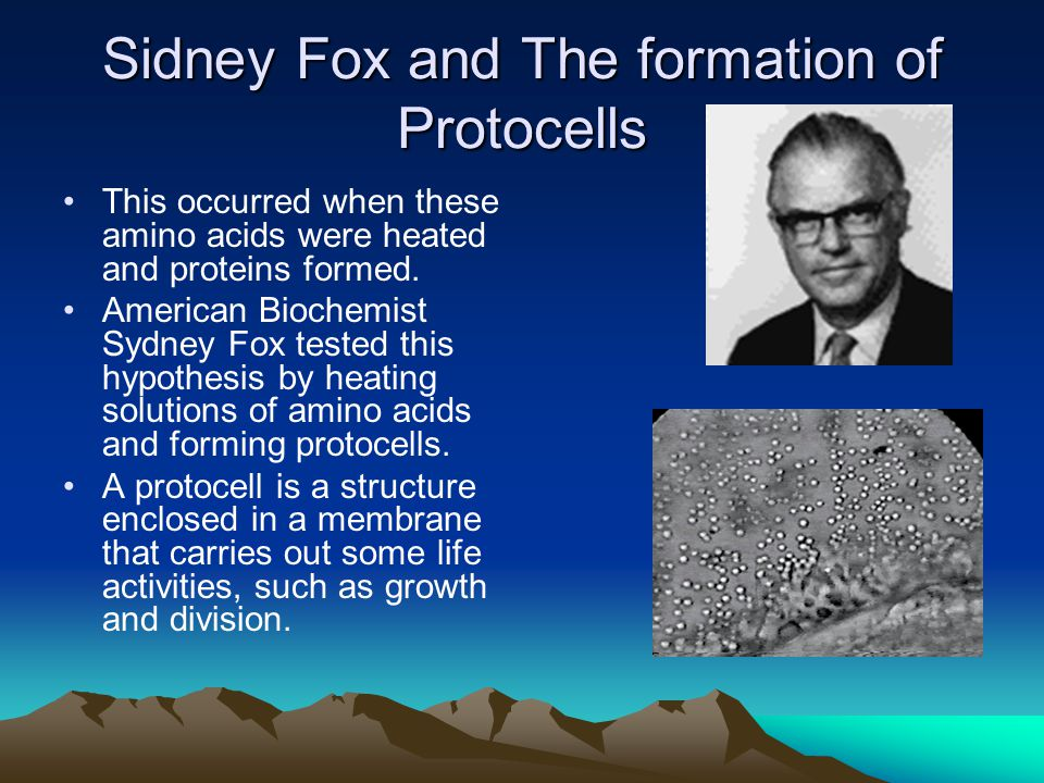 Sidney Fox and The formation of Protocells