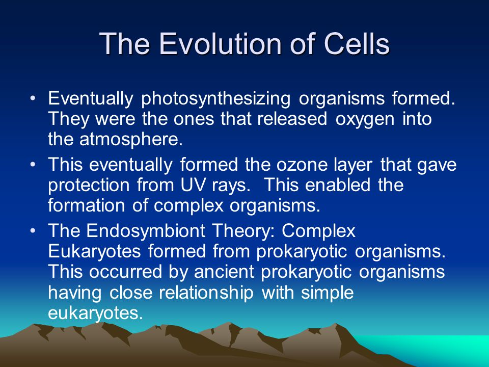 The Evolution of Cells Eventually photosynthesizing organisms formed. They were the ones that released oxygen into the atmosphere.