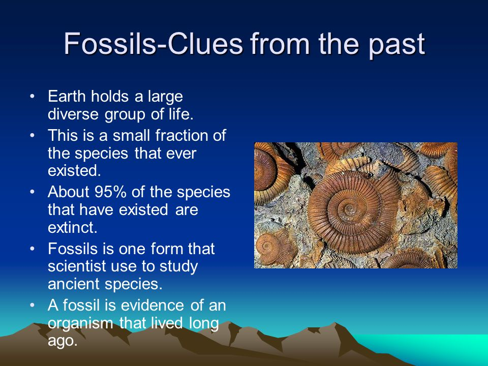 Fossils-Clues from the past