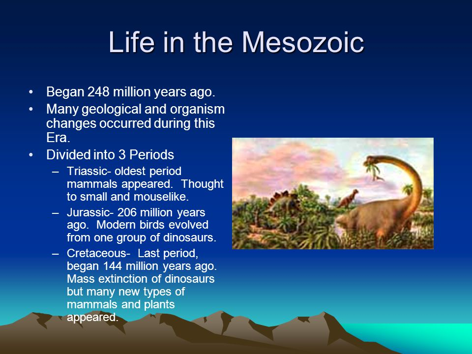 Life in the Mesozoic Began 248 million years ago.
