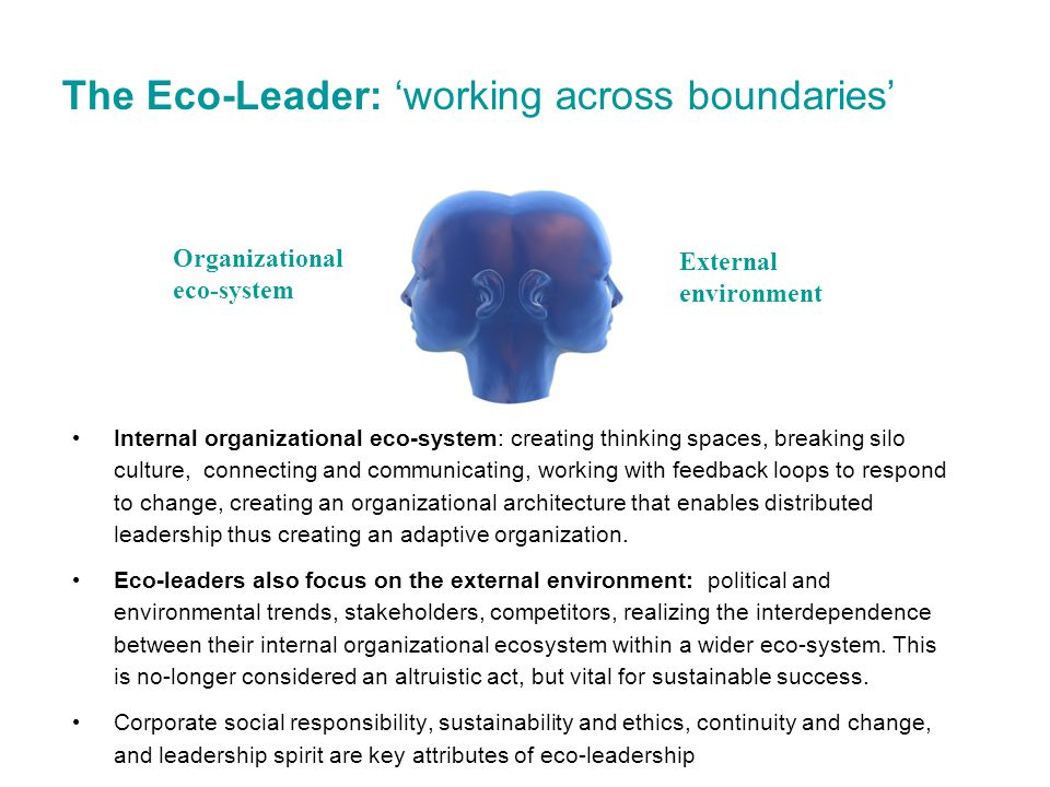 The Eco-Leader: 'working across boundaries'