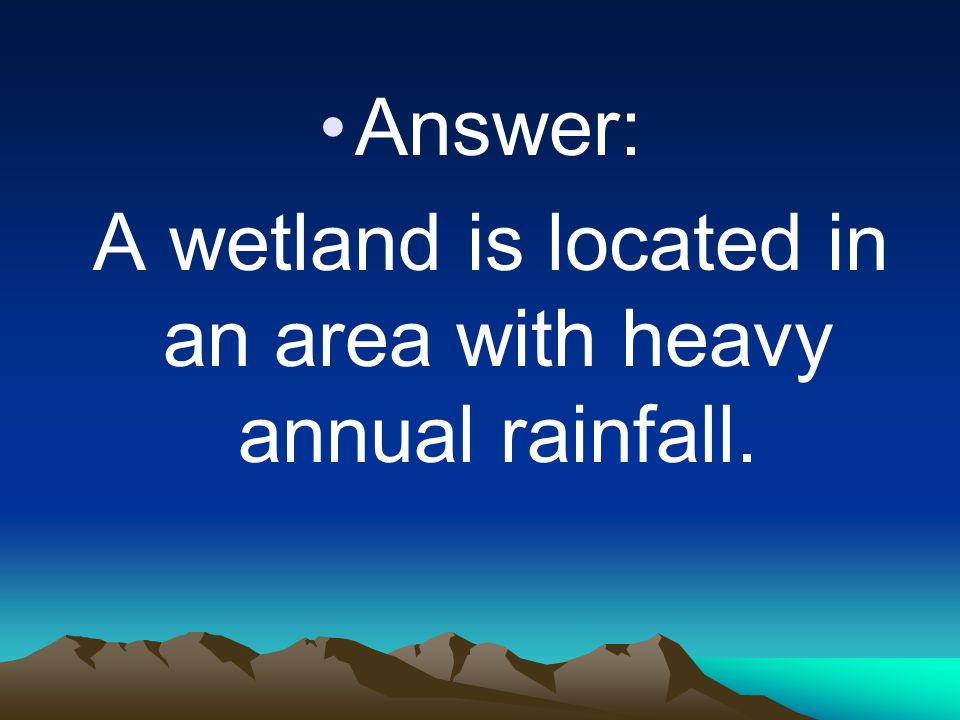 A wetland is located in an area with heavy annual rainfall.