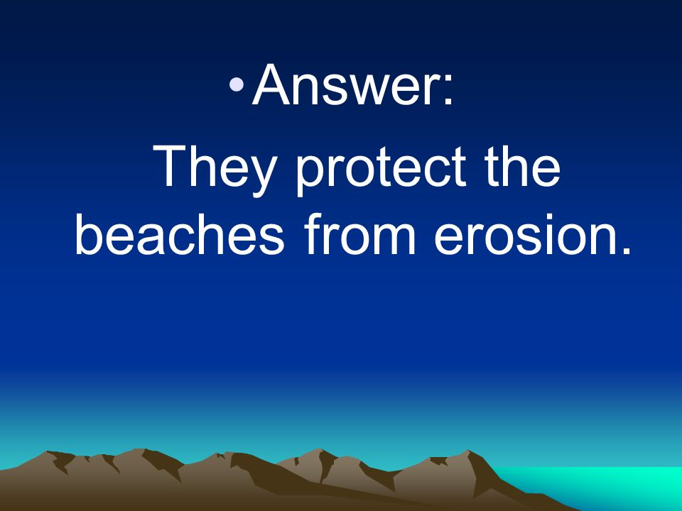 They protect the beaches from erosion.