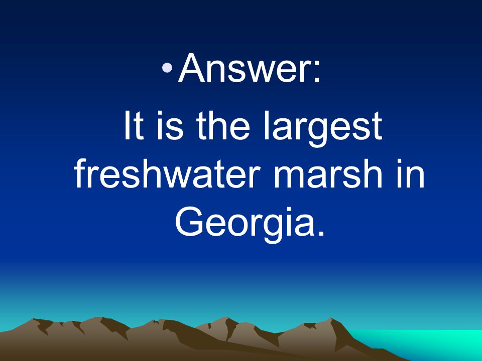 It is the largest freshwater marsh in Georgia.
