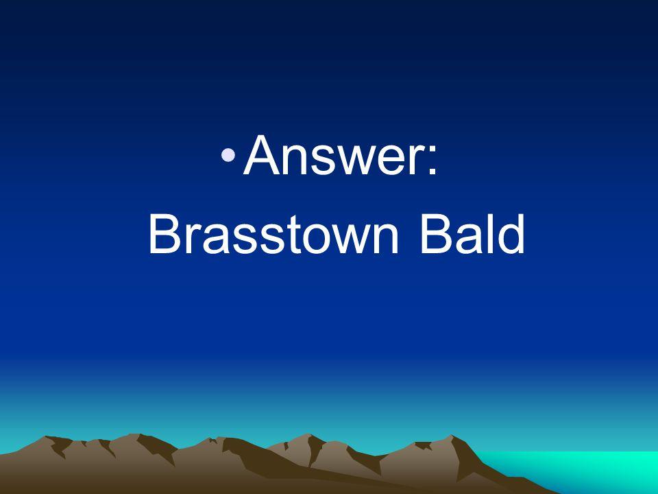 Answer: Brasstown Bald