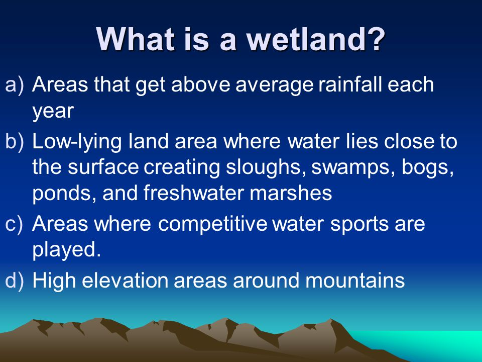 What is a wetland Areas that get above average rainfall each year