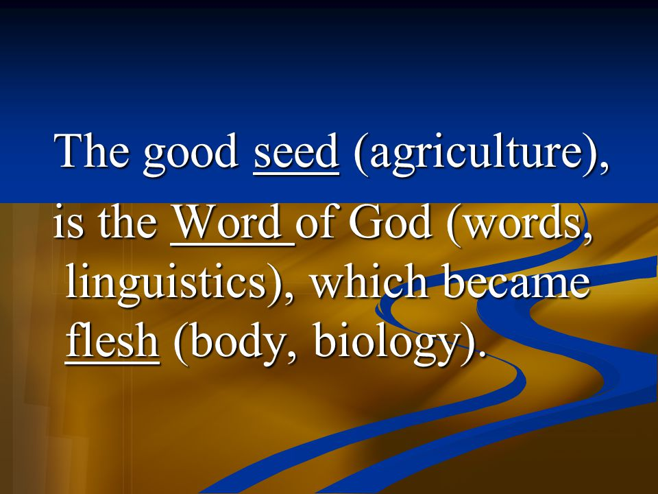 The good seed (agriculture),
