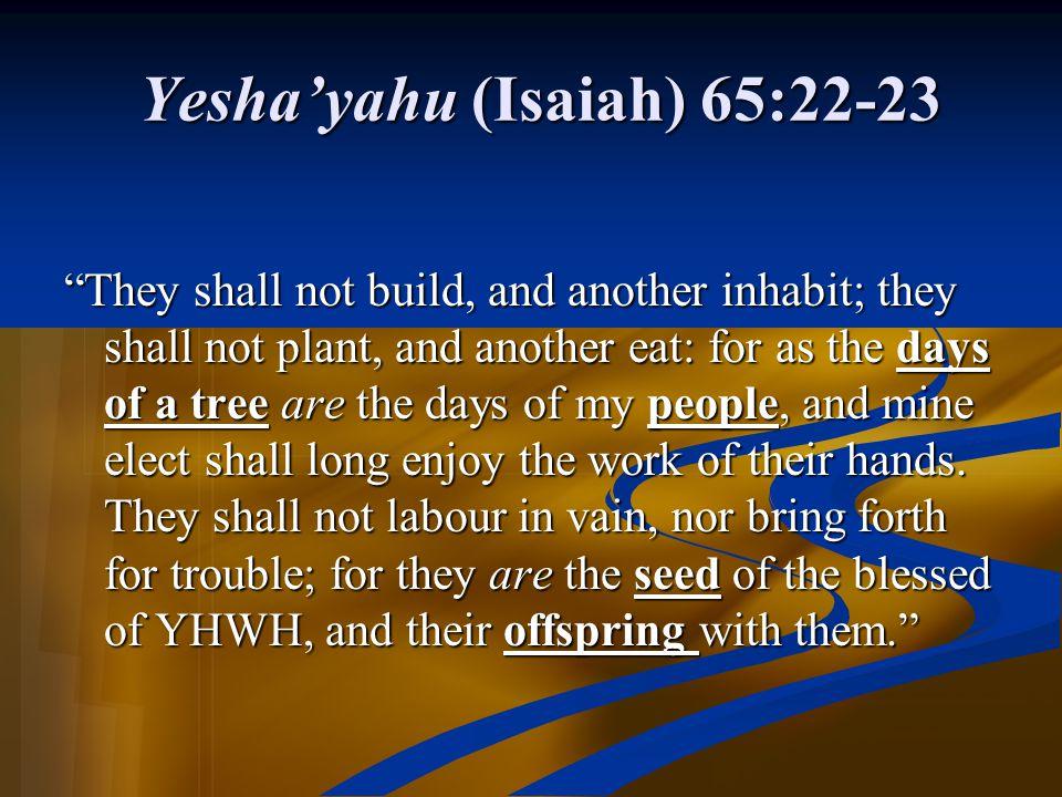 Yesha'yahu (Isaiah) 65:22-23