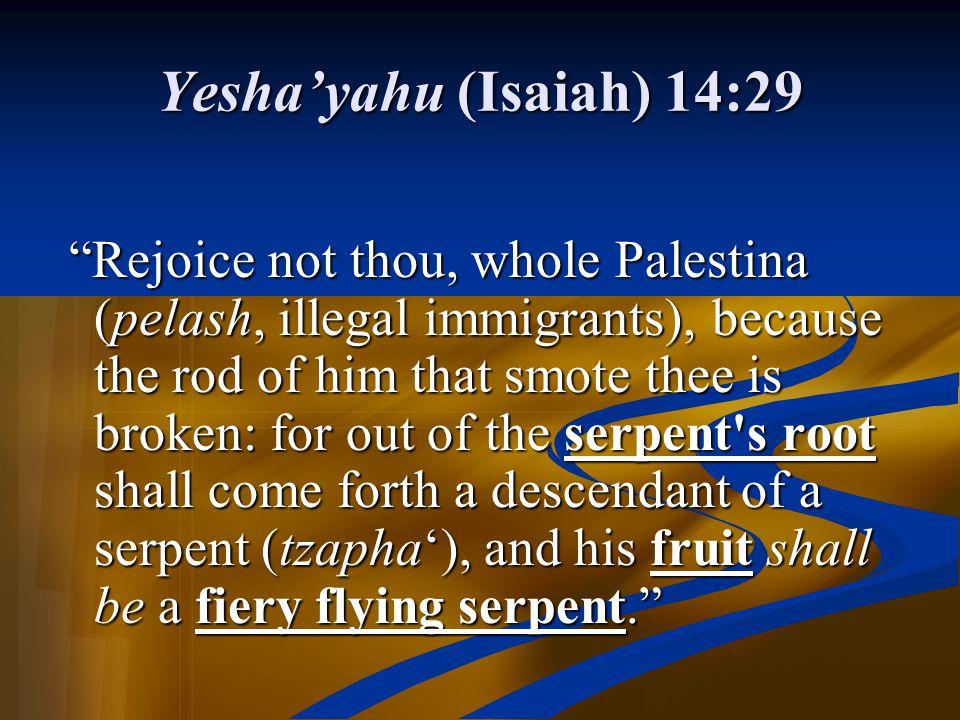 Yesha'yahu (Isaiah) 14:29