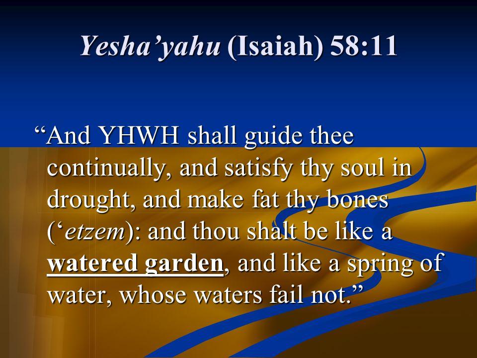 Yesha'yahu (Isaiah) 58:11