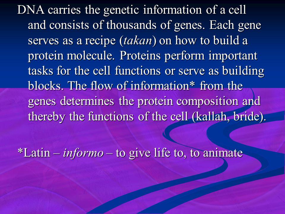 *Latin – informo – to give life to, to animate