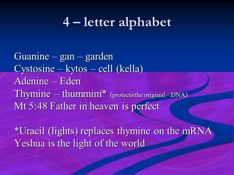 4 – letter alphabet Guanine – gan – garden