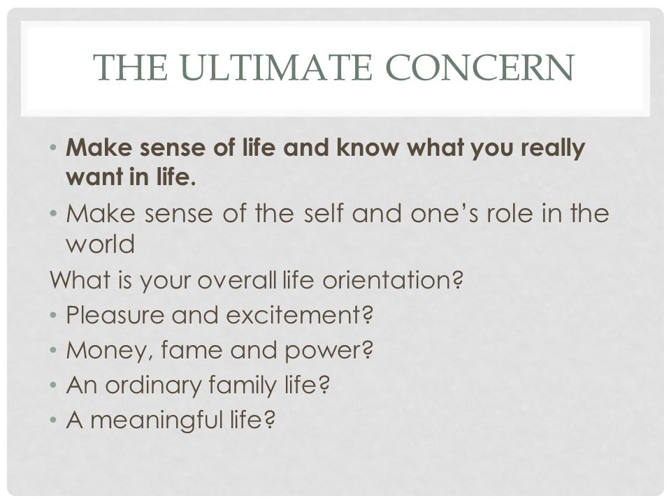 The Ultimate Concern Make sense of life and know what you really want in life. Make sense of the self and one's role in the world.