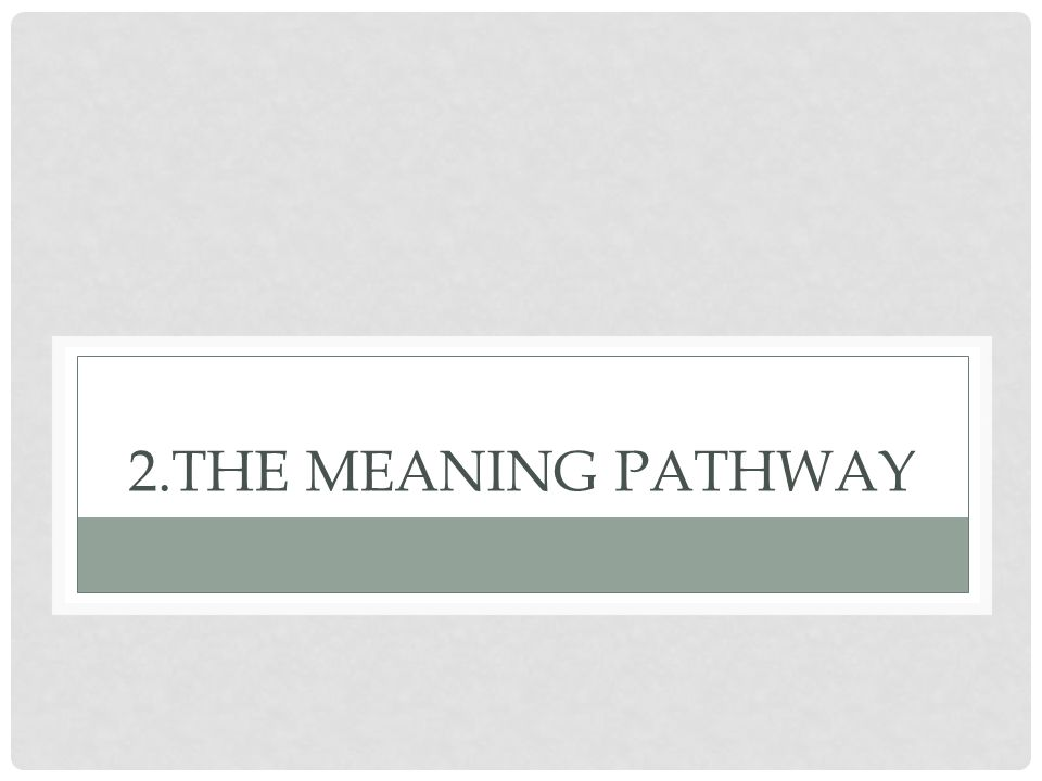 2.The Meaning Pathway