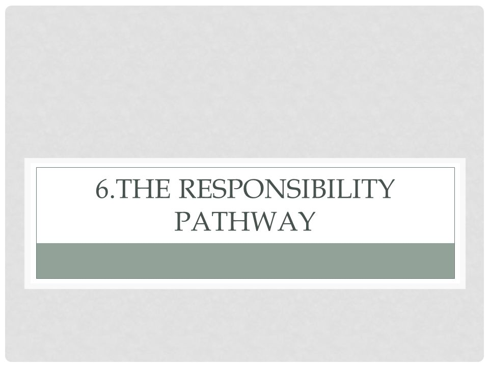 6.The responsibility Pathway
