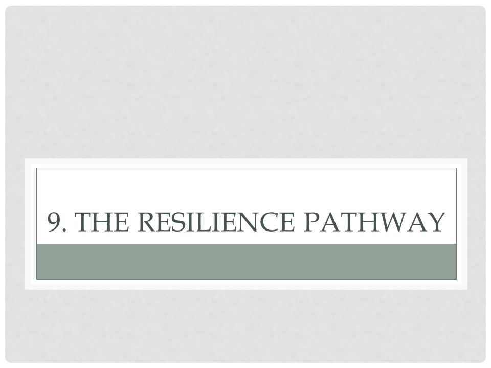 9. The Resilience Pathway