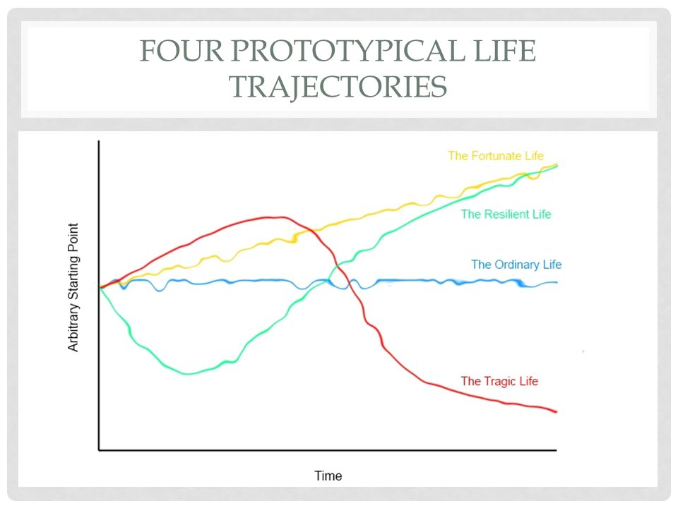 Four Prototypical Life Trajectories