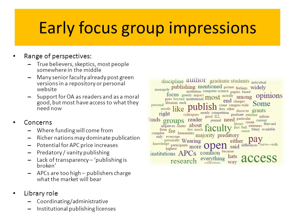 Early focus group impressions