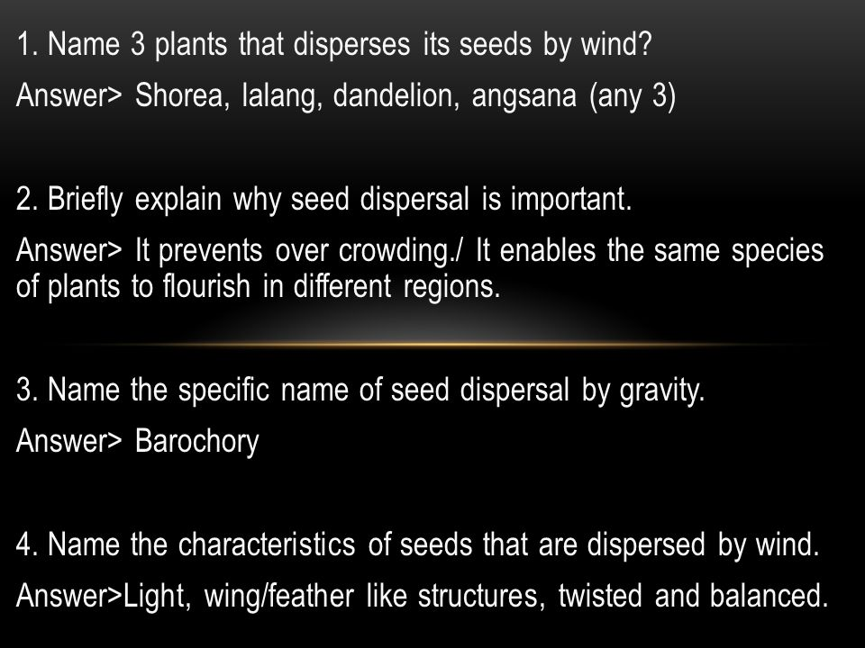 1. Name 3 plants that disperses its seeds by wind