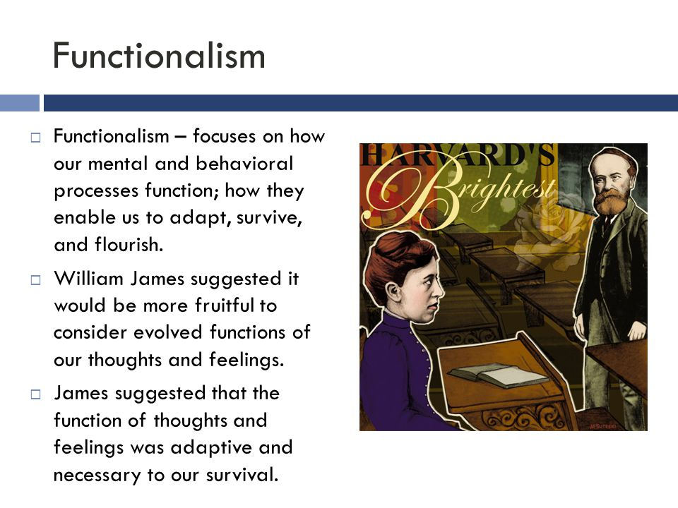 Functionalism Functionalism – focuses on how our mental and behavioral processes function; how they enable us to adapt, survive, and flourish.