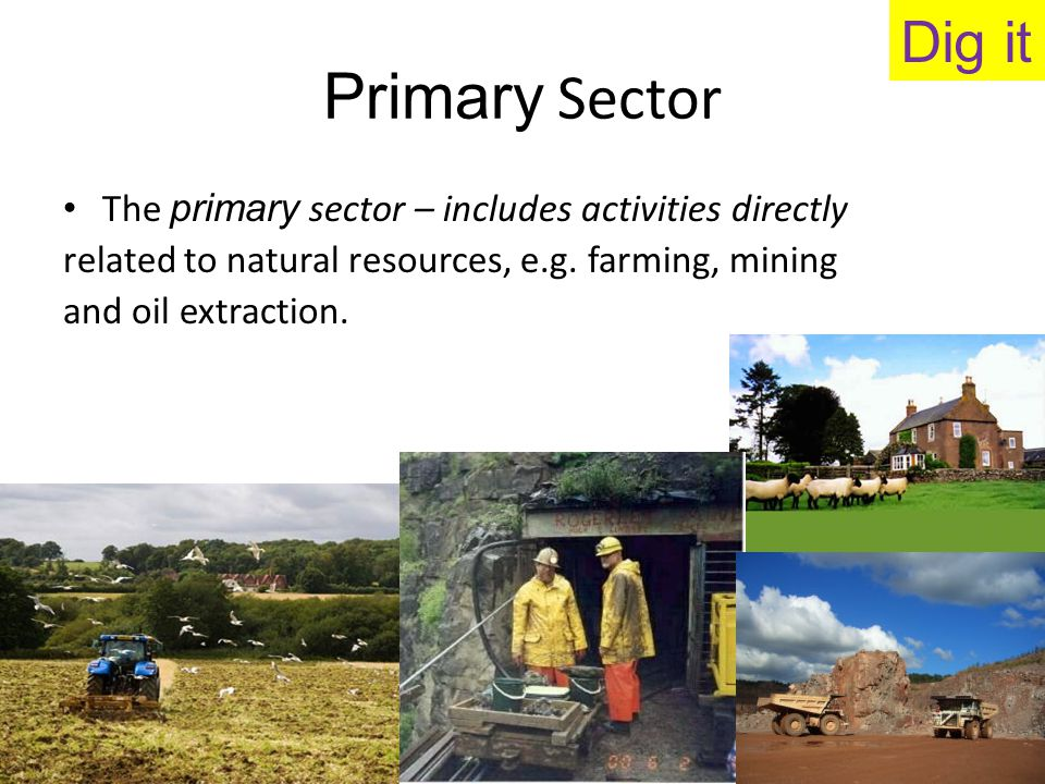 Dig it Primary Sector. The primary sector – includes activities directly. related to natural resources, e.g. farming, mining.