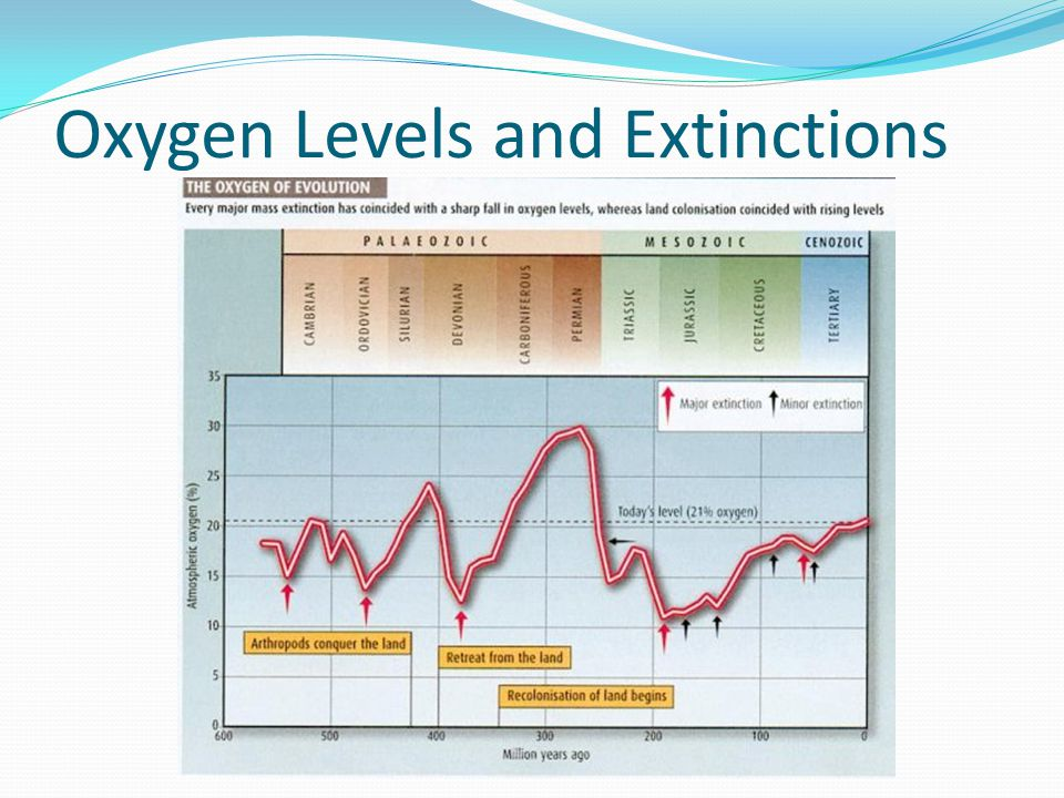 Oxygen Levels and Extinctions