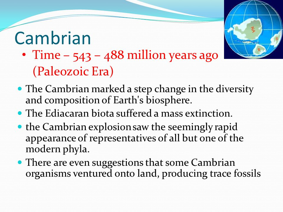 Cambrian Time – 543 – 488 million years ago (Paleozoic Era)