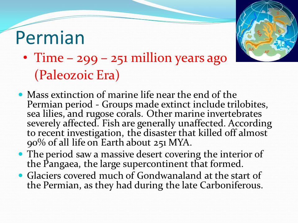 Permian Time – 299 – 251 million years ago (Paleozoic Era)