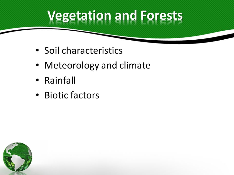 Vegetation and Forests