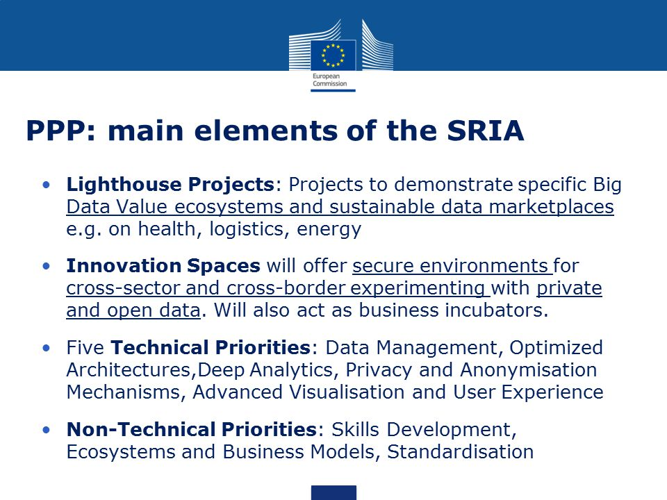 PPP: main elements of the SRIA