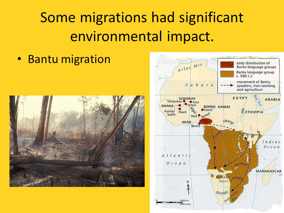 Some migrations had significant environmental impact.