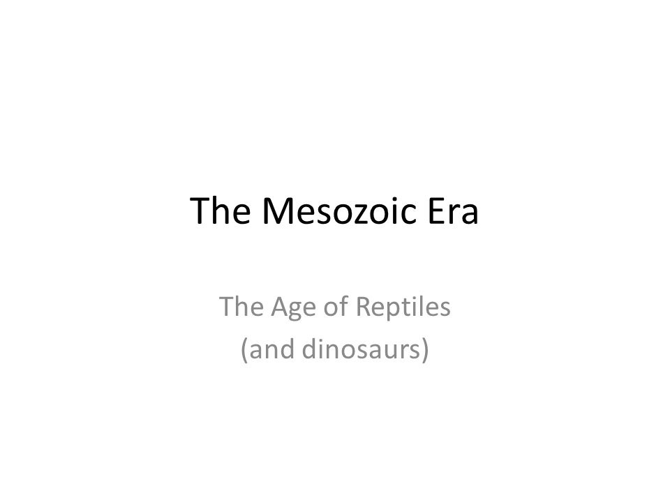 The Age of Reptiles (and dinosaurs)