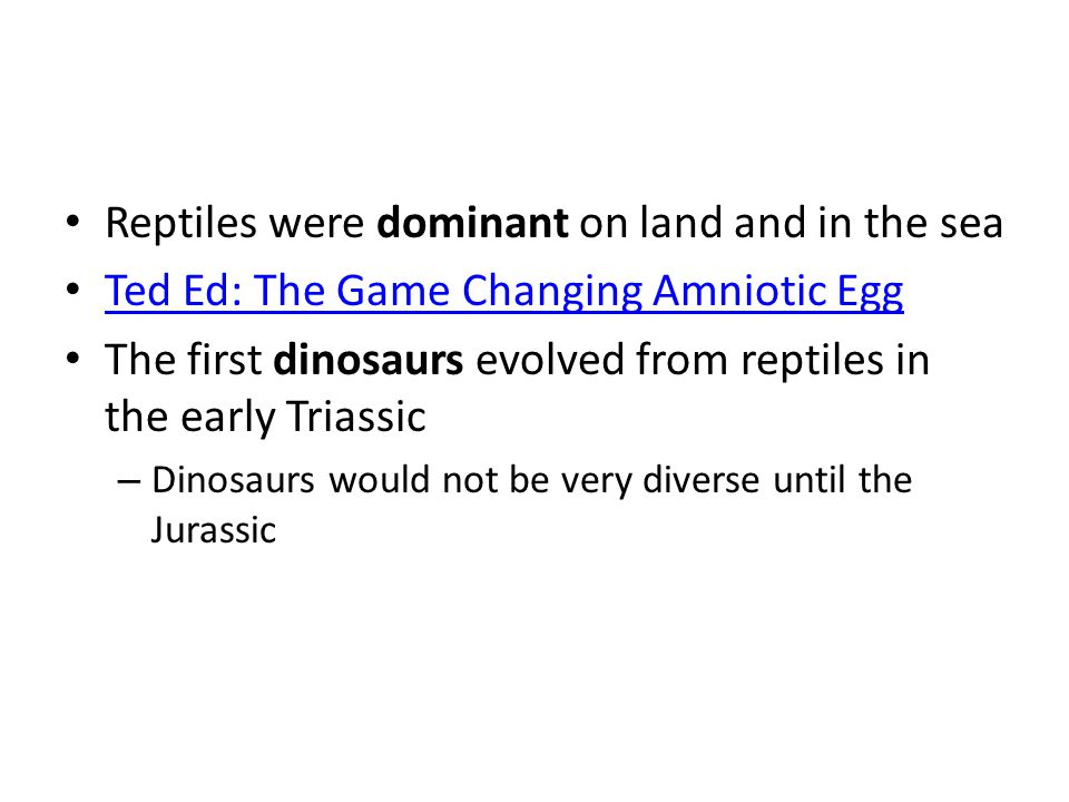 Reptiles were dominant on land and in the sea