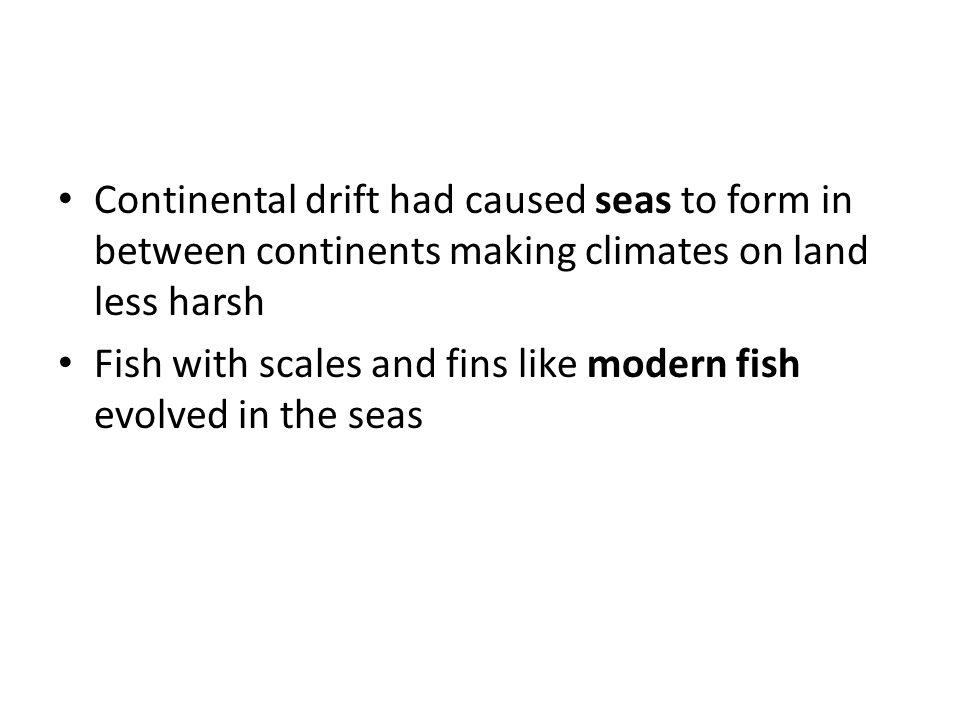 Continental drift had caused seas to form in between continents making climates on land less harsh