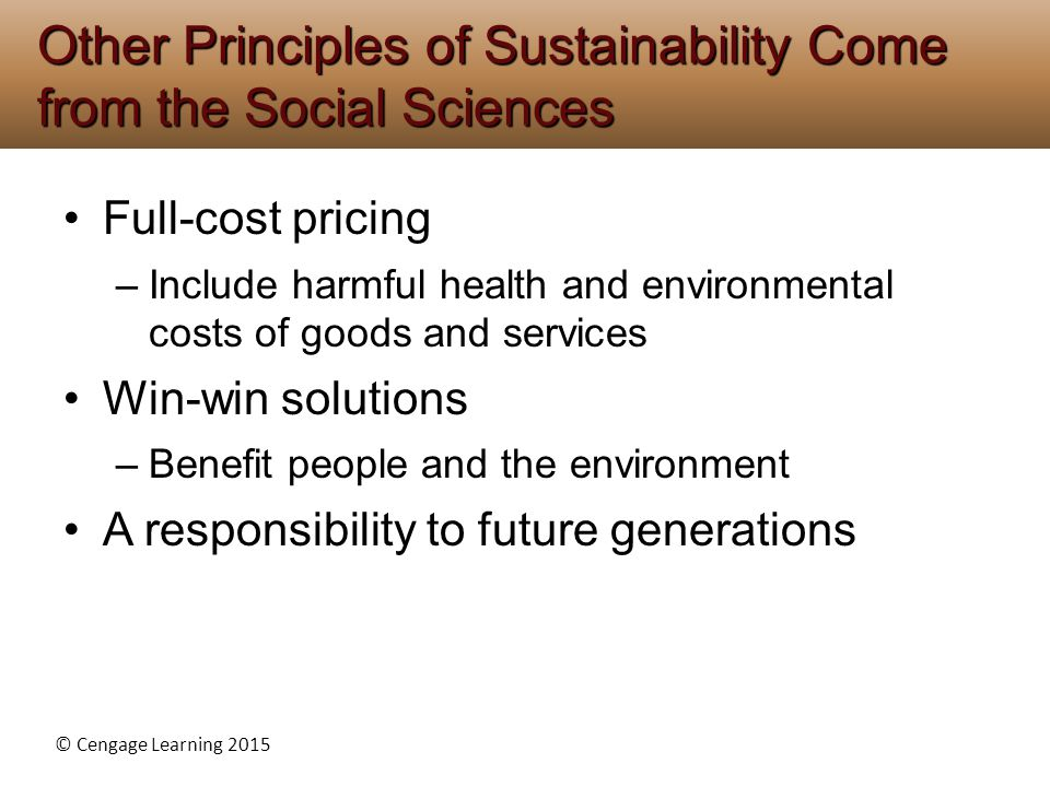 scientific principles of sustainability The set of five sustainability principles proposed below is offered in order science brought to the fore the fundamental fallibility of human knowledge.