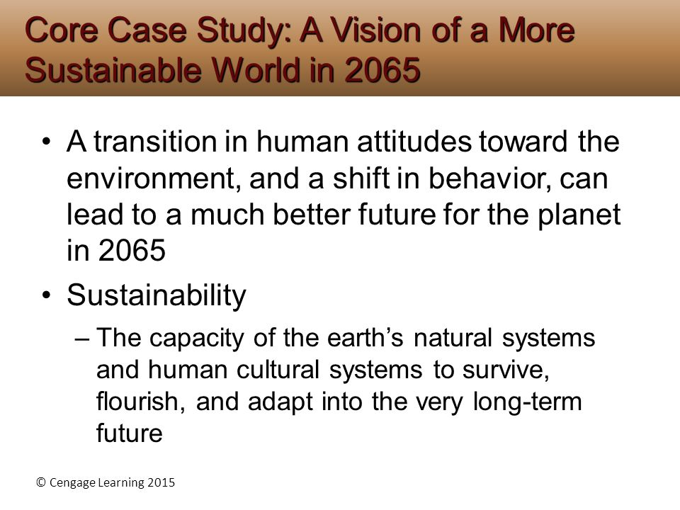 Core Case Study: A Vision of a More Sustainable World in 2065