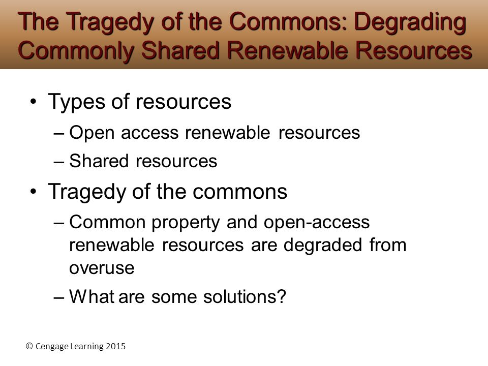 The Tragedy of the Commons: Degrading Commonly Shared Renewable Resources