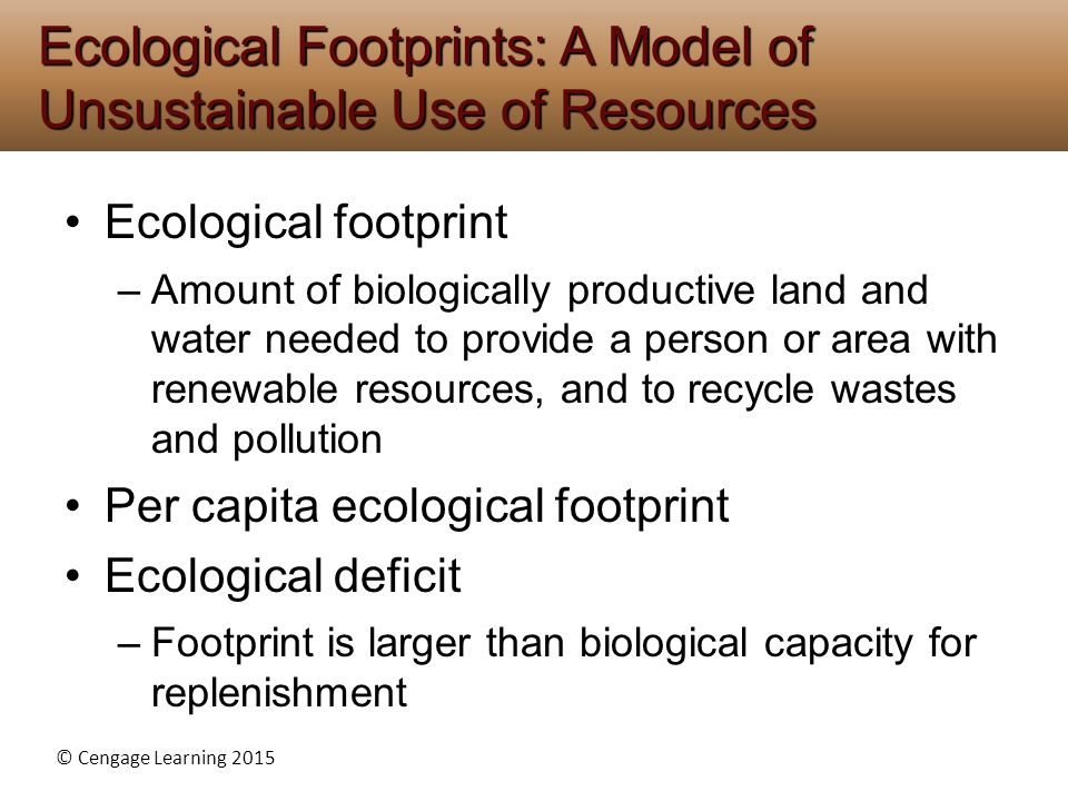 Ecological Footprints: A Model of Unsustainable Use of Resources