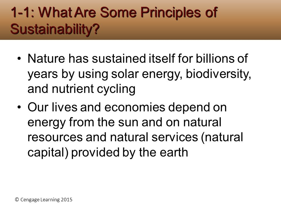 1-1: What Are Some Principles of Sustainability