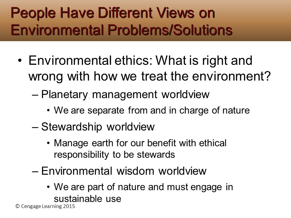 People Have Different Views on Environmental Problems/Solutions