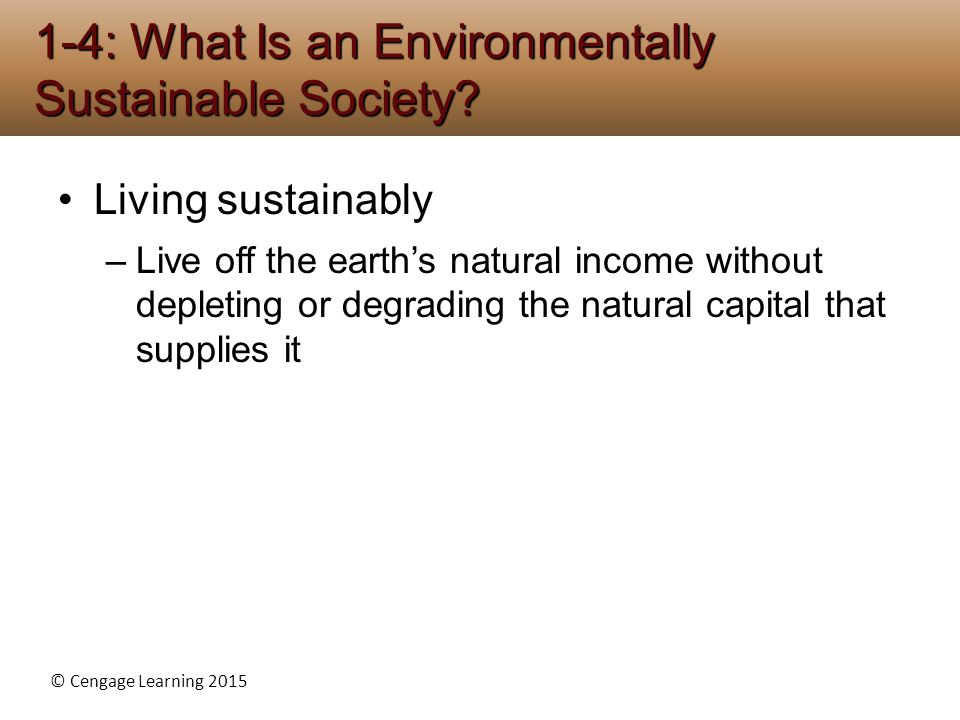 1-4: What Is an Environmentally Sustainable Society