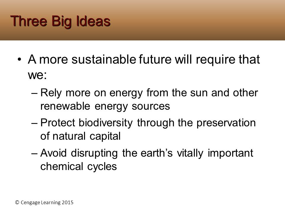 Three Big Ideas A more sustainable future will require that we: