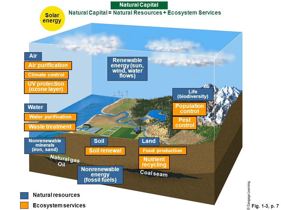 Natural Capital = Natural Resources + Ecosystem Services Solar energy