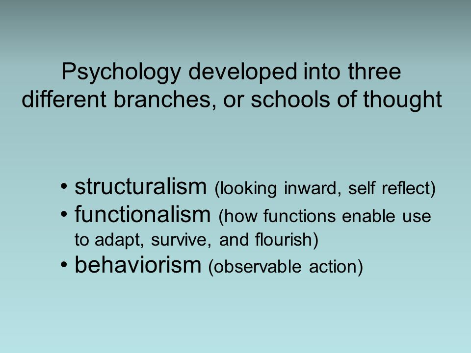 Psychology developed into three different branches, or schools of thought