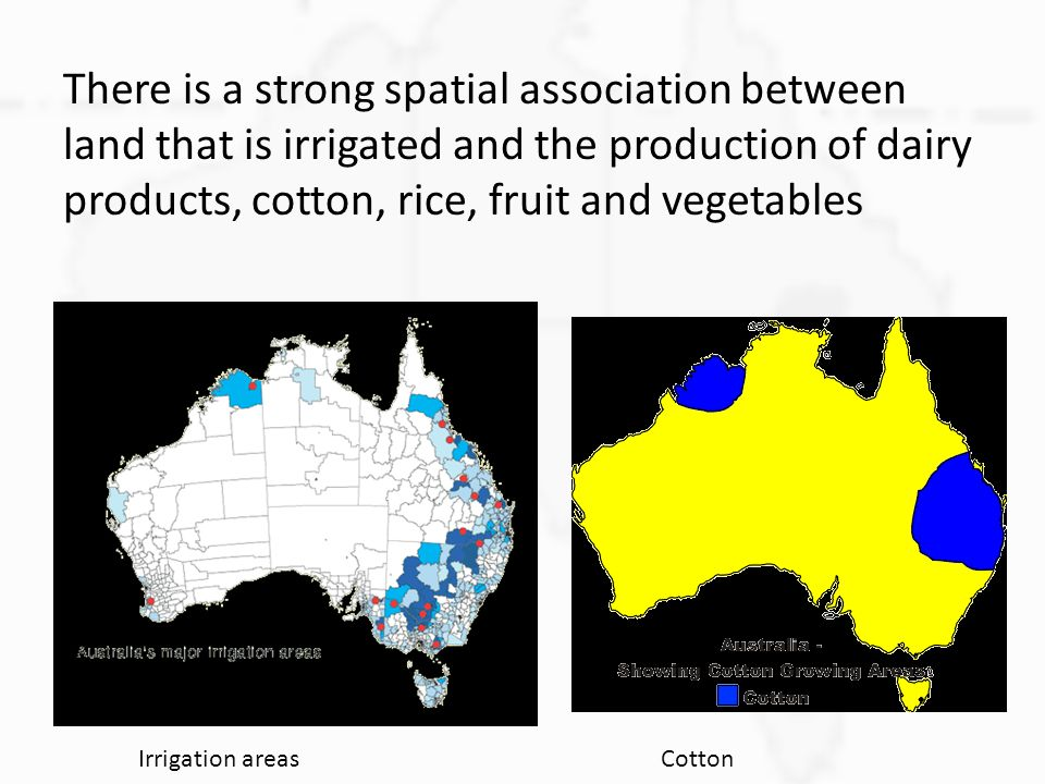 There is a strong spatial association between land that is irrigated and the production of dairy products, cotton, rice, fruit and vegetables