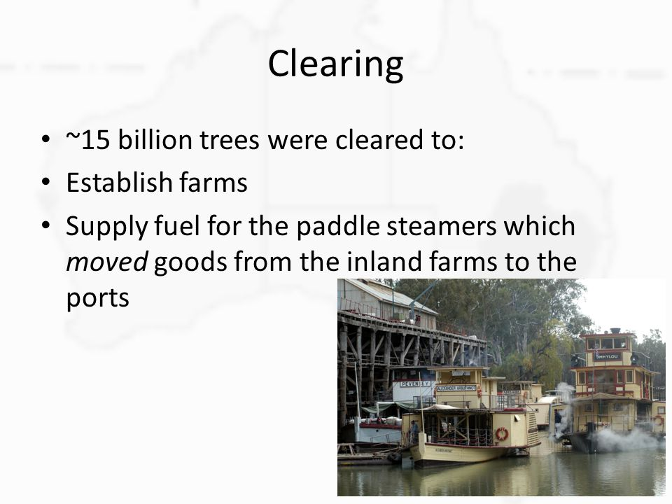 Clearing ~15 billion trees were cleared to: Establish farms